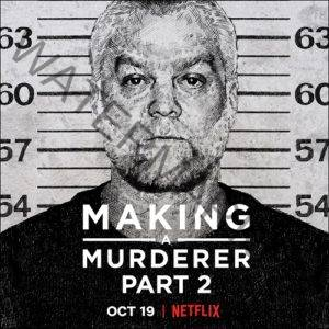 Making a Murderer Part Two Netflix
